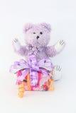 Purpura niedźwiedź i prezenta pudełko Zdjęcia Stock