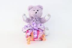 Purpura niedźwiedź i prezenta pudełko Zdjęcie Royalty Free