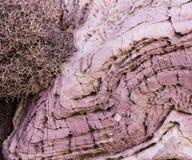 purpura rocks Arkivfoton