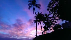 purpura skies Arkivfoton
