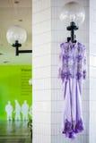 Purpurfärgad bröllopkappa Royaltyfria Bilder