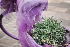 Purpurfärgad cykel för tappning med växter på den arkivfoto