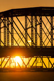 Purpurfärgad folkbro och Taylor Southgate Bridge - Ohio River Royaltyfri Bild