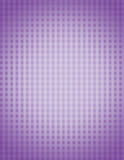 Purpurfärgad ginghambakgrund Royaltyfria Foton