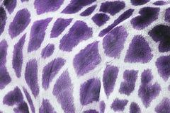 Purpurfärgad giraff royaltyfri bild