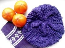 Purpurfärgad handske-, hatt- och apelsinpersimon Royaltyfri Foto