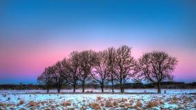 Purpurfärgad himmel Fotografering för Bildbyråer