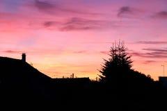 Purpurfärgad himmel i solnedgången Arkivfoton