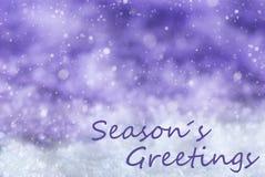Purpurfärgad julbakgrund, snö, snöflingor, text kryddar hälsningar Arkivfoton
