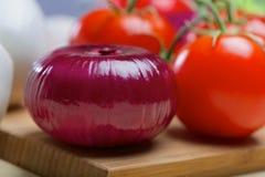 Purpurfärgad lök och tomat Royaltyfri Bild