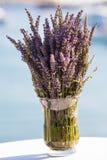 Purpurfärgad lavendel Royaltyfri Fotografi