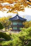 Purpurfärgad lotusblomma i pondHyangwonjeongpaviljongen i den Gyeongbokgung slotten i Korea Arkivfoton