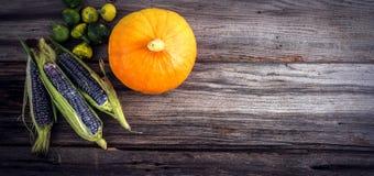 Purpurfärgad majs med sidor Royaltyfria Bilder