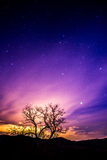 Purpurfärgad natthimmel Arkivbild