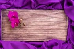 Purpurfärgad orkidé på träbakgrund kopiera avstånd greeting lyckligt nytt år för 2007 kort Vår Kvinnadag 8 mars Arkivbild