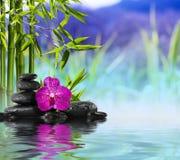 Purpurfärgad orkidé, stenar och bambu på vattnet Arkivbilder