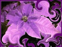 Purpurfärgad psykedelisk blomma Arkivbild