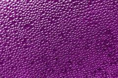 Purpurfärgad rosa bakgrund - vattendroppar lagerför foto Fotografering för Bildbyråer