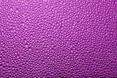 Purpurfärgad rosa bakgrund: vattendroppar - materielfoto Royaltyfri Bild