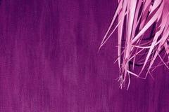 Purpurfärgad rosa violett magentafärgad färg för svart torr för bakgrundspalmträd för filial grå för kanfas proton för tyg royaltyfri bild