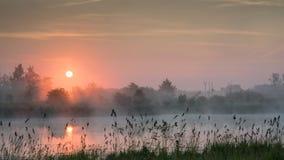 Purpurfärgad soluppgång över en sjö Arkivfoto