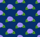 Purpurfärgad vanlig hortensiablomma som är sömlös på bakgrund för indigoblå blått också vektor för coreldrawillustration royaltyfri illustrationer