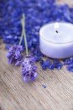 Purpurfärgad wellnessbakgrund Royaltyfri Bild