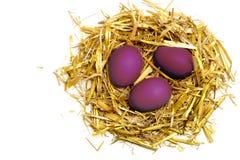 Purpurfärgade ägg i ett easter rede av sugrör som isoleras på den vita backgrouen Fotografering för Bildbyråer