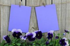 Purpurfärgade anmärkningskort som hänger på klädstreck med lilor, blommar gränsen Royaltyfri Foto