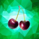 Purpurfärgade Cherry Polygon Arkivfoton