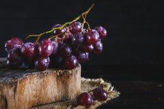 Purpurfärgade druvor Arkivfoton