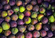 Purpurfärgade fikonträd på försäljning i fruktmarknad royaltyfri foto