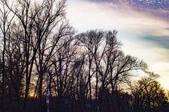 Purpurfärgade himlar och solnedgång på flagga arkivbild