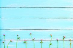 Purpurfärgade lösa blommor på blå träbakgrund arkivbilder
