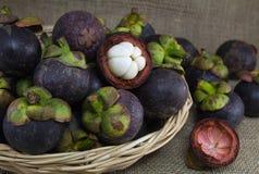 Purpurfärgade mangosteens i en rottingkorg Fotografering för Bildbyråer