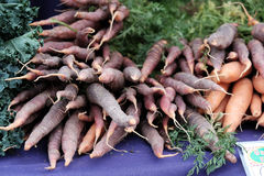 Purpurfärgade morötter på den Corvallis bondemarknaden Royaltyfri Fotografi