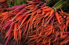 Purpurfärgade och orange morötter Arkivbild