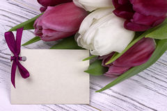Purpurfärgade och vita tulpan med vitbok på en vit träbakgrund med kortet för text Kvinnas dag 8 mars dagmamma s Fotografering för Bildbyråer
