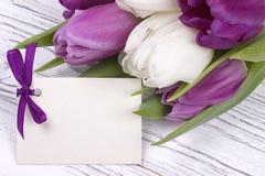 Purpurfärgade och vita tulpan med vitbok på en vit träbakgrund med kortet för text Kvinnas dag 8 mars dagmamma s Royaltyfri Bild