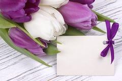 Purpurfärgade och vita tulpan med vitbok på en vit träbakgrund med kortet för text Kvinnas dag 8 mars dagmamma s Royaltyfri Foto