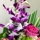 Purpurfärgade orkidér och en rosa färgros Arkivfoto