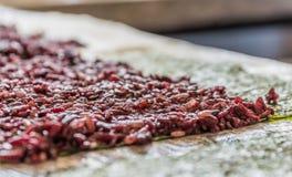 Purpurfärgade ris på ett ark av havsväxt som är klart för ett strikt vegetariansushimål Arkivbilder