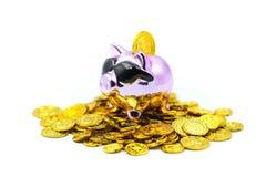 Purpurfärgade spargrispengar med guld- mynt royaltyfria foton
