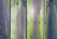 Purpurfärgat gammalt rostat trä Arkivbild