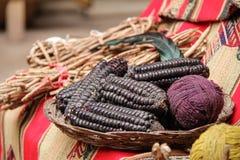 Purpurfärgat majsbruk som naturliga färger Arkivfoto