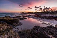 Purpurfärgad solnedgång över en tropisk stenig strand Arkivbilder