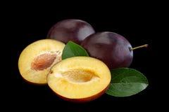 Purpurowa śliwka z liściem zdjęcia stock