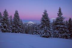Purpurowa noc w zim górach Fotografia Royalty Free