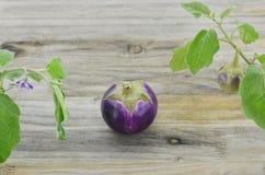 Purpurowa oberżyna na drewnianym stole obrazy stock
