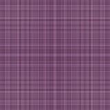 Purpurowa szkocka krata zdjęcia royalty free